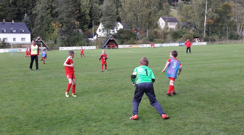 F-Jugend FSV
